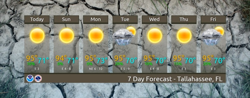 Tallahassee forecast